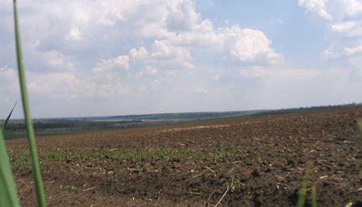 природа, земля, фермер, поле