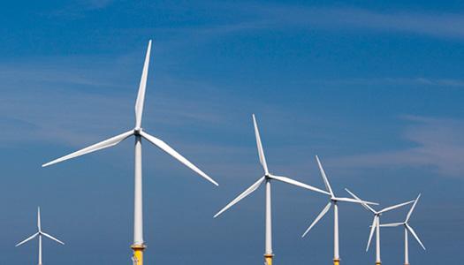 У Бразилії запустили найбільшу в Південній Америці вітряну електростанцію