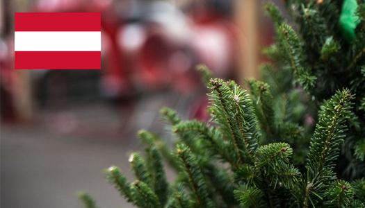 Австрия, Новый год