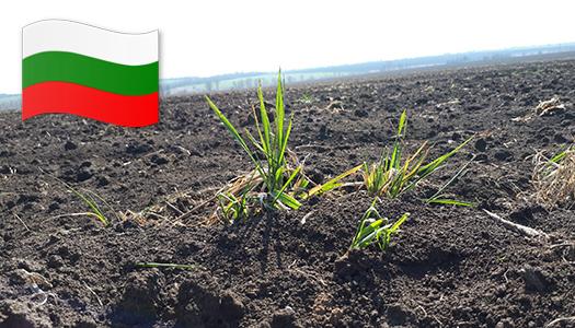 Болгария, земля