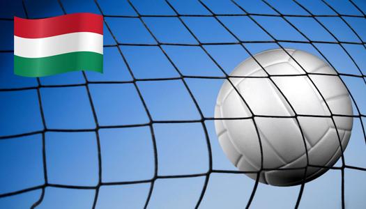 Венгрия, волейбол, спорт