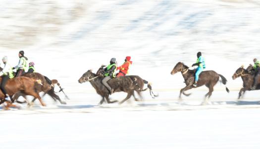 В Швейцарии прошли зимние скачки