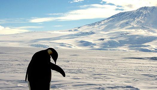 Ученые изучают образцы древнейшего льда из Антарктиды